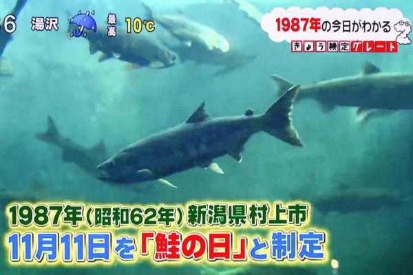 11月11日を鮭の日と制定