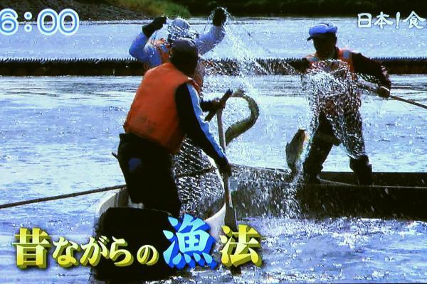 居繰り網漁