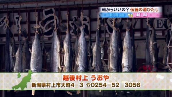 鮭、すごい