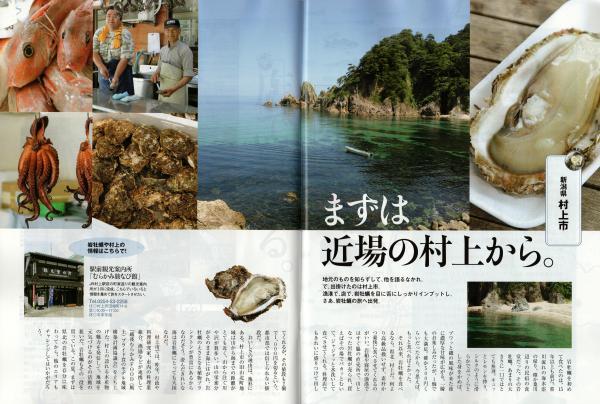 天然岩牡蠣、まずは新潟の村上から