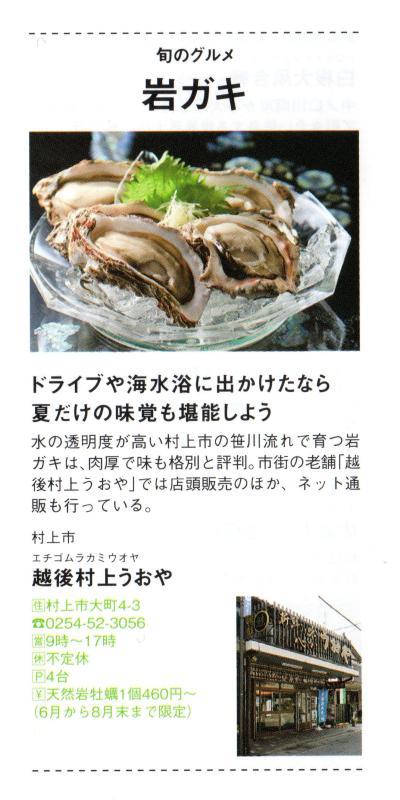 笹川流れで育つ岩ガキは、肉厚で味も格別と評判